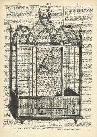 square-bird-cage.jpg