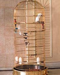 birdcage7.JPG