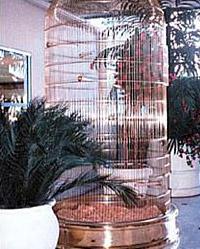 birdcage8.jpg